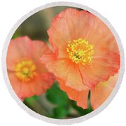 Round Beach Towel featuring the photograph Peach Poppies by Sally Weigand