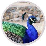 Pretty Proud Peacock Round Beach Towel