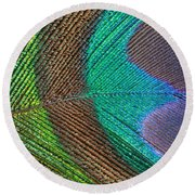 Peacock Feather Close Up Round Beach Towel