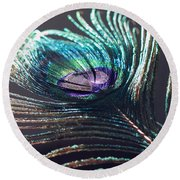 Peacock Feather In Sun Light Round Beach Towel