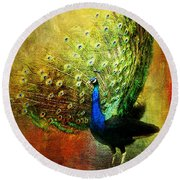 Peacock In Full Color Round Beach Towel
