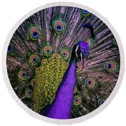 Peacock In Purple Round Beach Towel