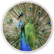 Round Beach Towel featuring the photograph Peacock Indian Blue by Sharon Mau