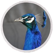 Peacock Stare Down Round Beach Towel
