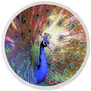 Round Beach Towel featuring the painting Peacock Wonder, Colorful Art by Jane Small