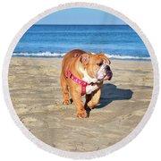 Peanut On The Beach Round Beach Towel