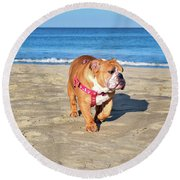 Peanut On The Beach Round Beach Towel