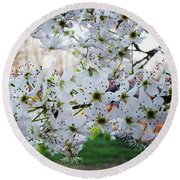 Round Beach Towel featuring the photograph Pear Tree by Donna Dixon