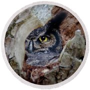 Peek A Boo Owl Round Beach Towel