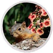 Peek-a-boo Squirrel Round Beach Towel