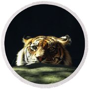 Round Beach Towel featuring the photograph Peek-a-boo Tiger by Angela DeFrias