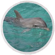 Round Beach Towel featuring the photograph Peeking Dolphin by Melissa Lane