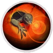 Peeking Out Round Beach Towel by Elaine Manley