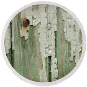 Round Beach Towel featuring the photograph Peeling 3 by Mike Eingle
