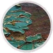 Round Beach Towel featuring the photograph Peeling by Mike Eingle