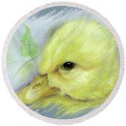 Pekin Duckling Portrait Round Beach Towel