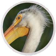 Pelican 2017-3 Round Beach Towel