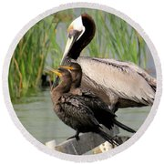 Pelican And Twins Round Beach Towel