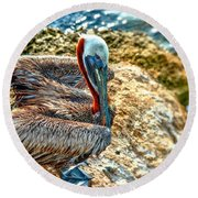 Pelican II Round Beach Towel