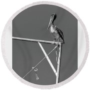 Pelican In Black And White Round Beach Towel by Andy Crawford