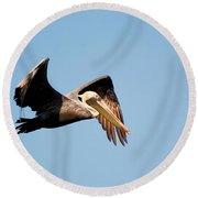 Pelican In Flight Round Beach Towel