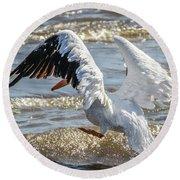 Pelican Jump Round Beach Towel by Ray Congrove