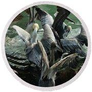 Pelican Mosh Pit Round Beach Towel