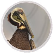 Pelican  Round Beach Towel by Nancy Landry