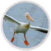 Round Beach Towel featuring the photograph Pelican Panorama by James BO Insogna