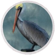 Round Beach Towel featuring the photograph Pelican Portrait by Benanne Stiens