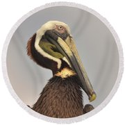 Pelican Portrait Round Beach Towel by Nancy Landry