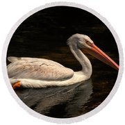 Pelican Swimming In Salisbury Round Beach Towel