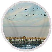 Pelicans At Flagler Beach Round Beach Towel