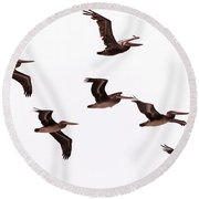 Pelicans At Half Moon Bay Round Beach Towel
