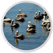 Pelicans Blue Round Beach Towel