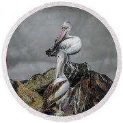 Pelicans On Rocks Round Beach Towel