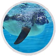 Penguin Dive Round Beach Towel