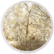 Pennsylvania Autumn Woods Round Beach Towel