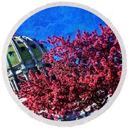 Round Beach Towel featuring the photograph Pennsylvania State Capitol Dome In Bloom by Shelley Neff
