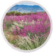 Penstemon At Black Hills Round Beach Towel