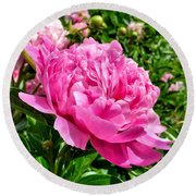 Peonies In Spring Round Beach Towel