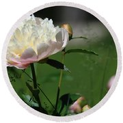 Round Beach Towel featuring the photograph Peony Beauty by Rick Morgan