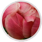 Round Beach Towel featuring the photograph Peony Detail by Jean Noren