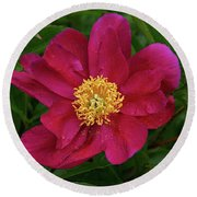 Round Beach Towel featuring the photograph Peony In Rain by Sandy Keeton