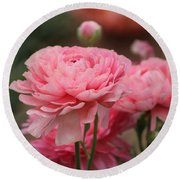 Round Beach Towel featuring the photograph Peony Pink Ranunculus Closeup by Colleen Cornelius