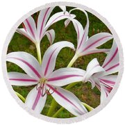 Peppermint Lilies Round Beach Towel