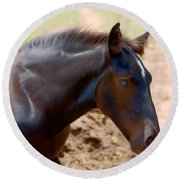 Percheron Colt - Digitalart Round Beach Towel