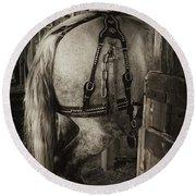 Percheron Draft Horse Round Beach Towel