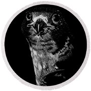 Peregrin Falcon Round Beach Towel by Lawrence Tripoli