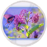 Perfect Butterfly Day Round Beach Towel by Shirley Moravec